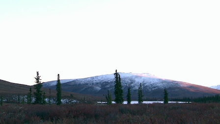 Watch Yukon Giants: Northern Alaska Moose: Part 1. Episode 1 of Season 5.